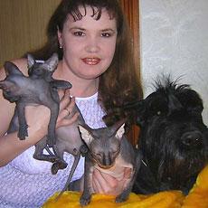 Подружить кошку с собакой