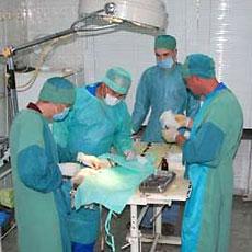 Ветеринарная хирургия и травматология