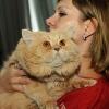 Выставка кошек 2012 - владельцы, питомцы и конкурсы