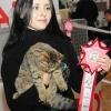 Выставка кошек 2011 - экспертиза RUI
